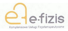 logo E-Fizis